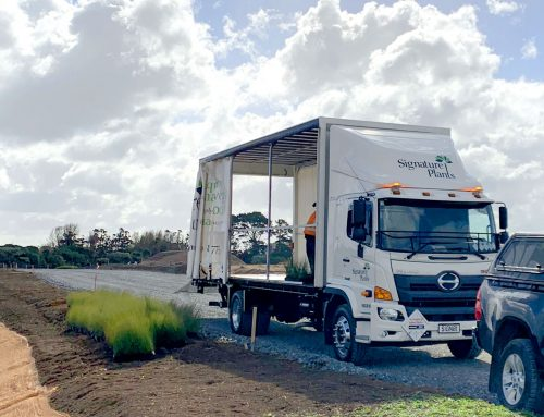 Maiden voyage for Signature Plants' new curtainsider