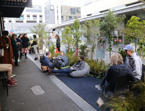 Providing free plants for Park(ing) Day 2019, Auckland
